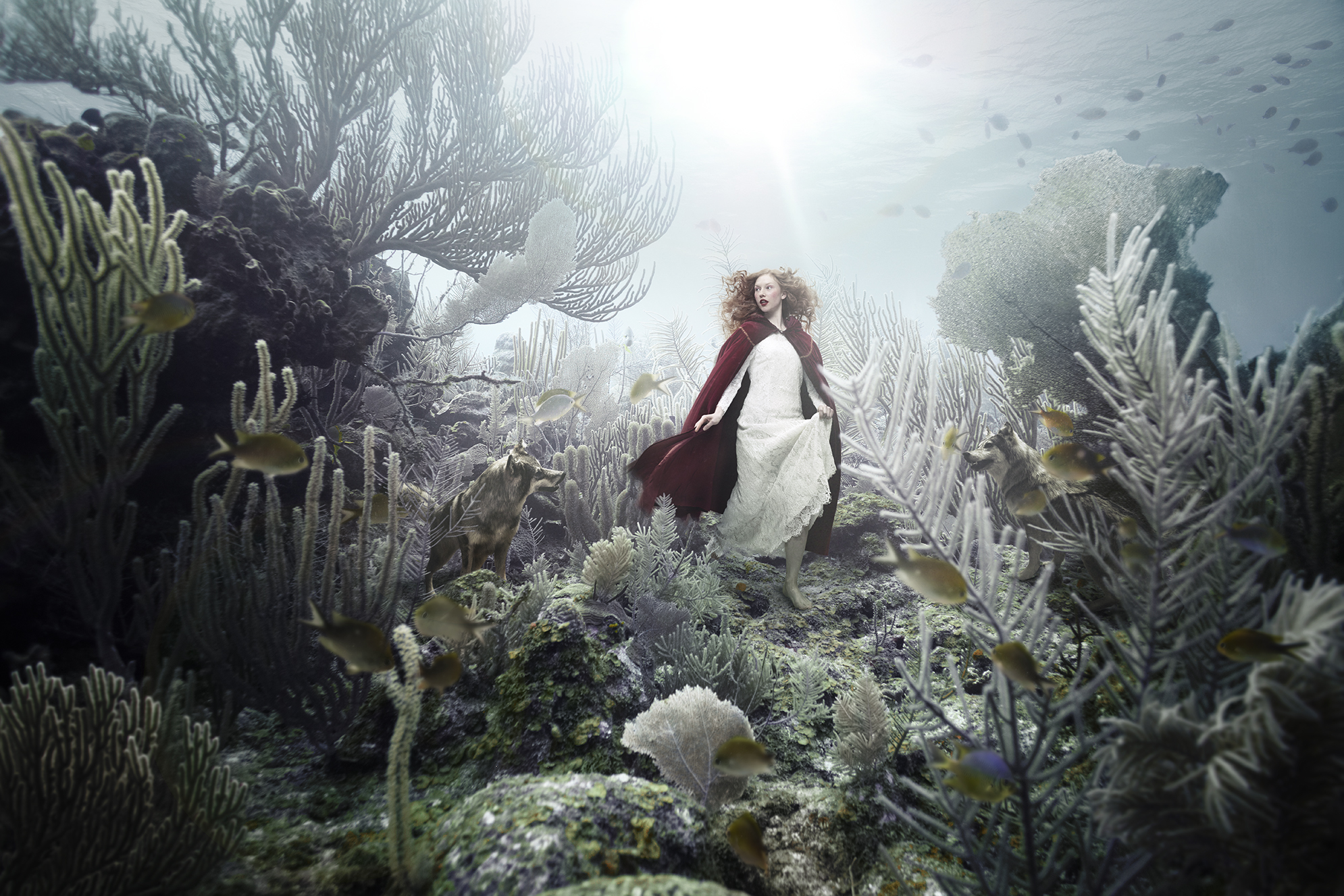 Andreas Franke_Little Red Riding Hood
